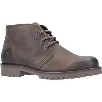 kengät Miehet Bootsit Cotswold  Khaki