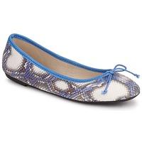 kengät Naiset Balleriinat Koah GAME Blue