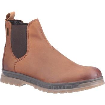 kengät Miehet Bootsit Cotswold  Chestnut
