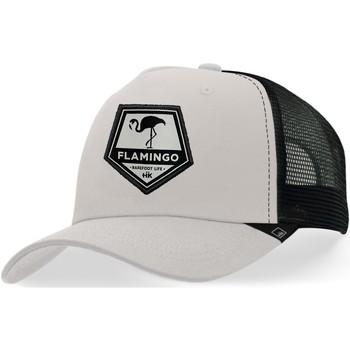 Asusteet / tarvikkeet Lippalakit Hanukeii Flamingo Harmaa