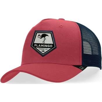 Asusteet / tarvikkeet Lippalakit Hanukeii Flamingo Punainen