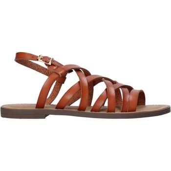 kengät Naiset Sandaalit ja avokkaat Refresh 72231 Ruskea