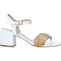 kengät Naiset Sandaalit ja avokkaat Alviero Martini E122 578A Valkoinen