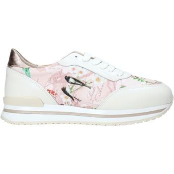 kengät Naiset Matalavartiset tennarit Alviero Martini 9851 622A Valkoinen