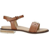 kengät Naiset Sandaalit ja avokkaat Alviero Martini E084 8578 Ruskea