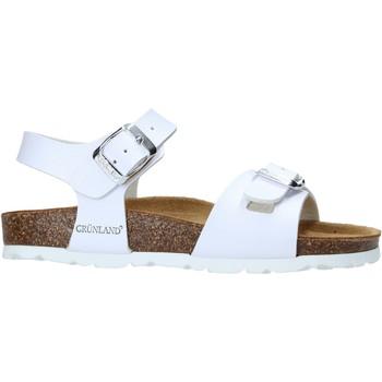 kengät Lapset Sandaalit ja avokkaat Grunland SB1569 Valkoinen