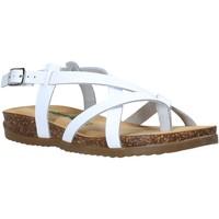 kengät Naiset Sandaalit ja avokkaat Bionatura 34A2005-I-BYCBIA Valkoinen