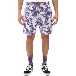 vaatteet Miehet Shortsit / Bermuda-shortsit Dickies DK0A4XAZB651 Valkoinen