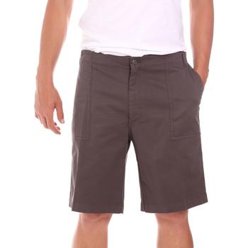 vaatteet Miehet Shortsit / Bermuda-shortsit Colmar 0867T 8SP Ruskea