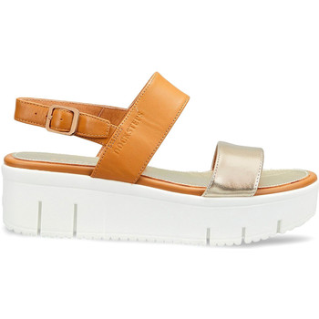 kengät Naiset Sandaalit ja avokkaat Docksteps DSW953101 Ruskea