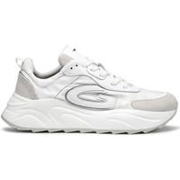 kengät Miehet Tennarit Alberto Guardiani AGM003608 Valkoinen