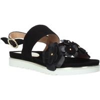 kengät Naiset Sandaalit ja avokkaat Docksteps DSE104965 Musta