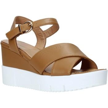 kengät Naiset Sandaalit ja avokkaat Docksteps DSW952001 Ruskea