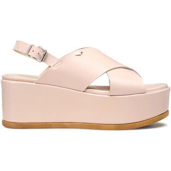 kengät Naiset Sandaalit ja avokkaat Alberto Guardiani AGW003003 Vaaleanpunainen