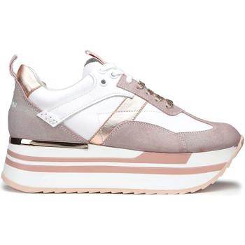 kengät Naiset Matalavartiset tennarit Alberto Guardiani AGW004302 Valkoinen