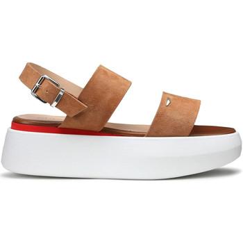 kengät Naiset Sandaalit ja avokkaat Alberto Guardiani AGW004101 Beige