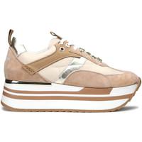 kengät Naiset Tennarit Alberto Guardiani AGW004304 Beige