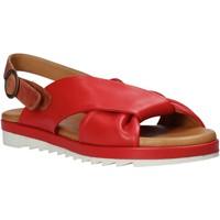 kengät Naiset Sandaalit ja avokkaat Sshady L1403 Punainen