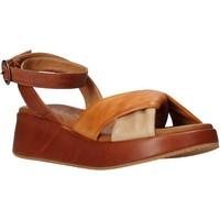 kengät Naiset Sandaalit ja avokkaat Sshady L2401 Ruskea