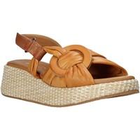 kengät Naiset Sandaalit ja avokkaat Sshady L2406 Ruskea