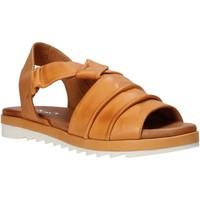 kengät Naiset Sandaalit ja avokkaat Sshady L1401 Ruskea