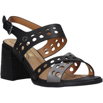 kengät Naiset Sandaalit ja avokkaat Wrangler WL01572A Musta
