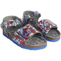 kengät Pojat Sandaalit ja avokkaat Spiderman 2300003857 Gris
