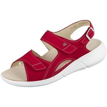 kengät Naiset Sandaalit ja avokkaat Finn Comfort Suva Punainen