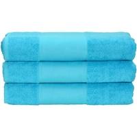 Koti Pyyhkeet ja pesukintaat A&r Towels 50 cm x 100 cm Aqua Blue