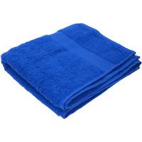 Koti Pyyhkeet ja pesukintaat Jassz Taille unique Royal