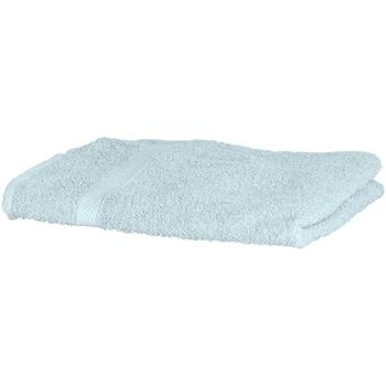 Koti Pyyhkeet ja pesukintaat Towel City Taille unique Peppermint