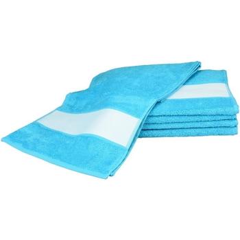 Koti Pyyhkeet ja pesukintaat A&r Towels 30 cm x 140 cm Aqua Blue