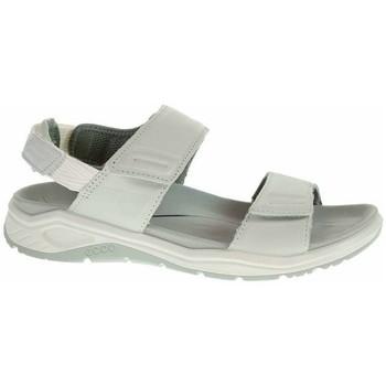 kengät Naiset Sandaalit ja avokkaat Ecco Xtrinsic W Harmaat