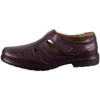 kengät Miehet Derby-kengät Josef Seibel Alastair 08 Ruskeat