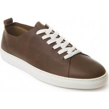 kengät Miehet Derby-kengät Montevita 71857 BROWN