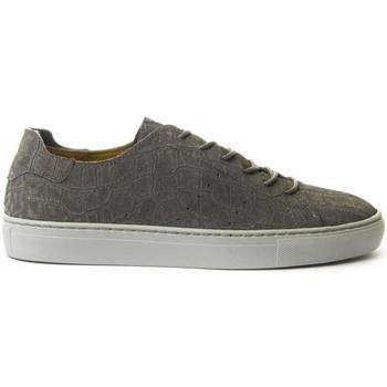 kengät Naiset Matalavartiset tennarit Montevita 71822 GREY