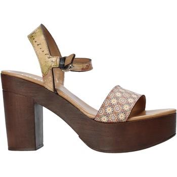 kengät Naiset Sandaalit ja avokkaat Alviero Martini E112 626A Ruskea