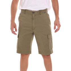 vaatteet Miehet Shortsit / Bermuda-shortsit Calvin Klein Jeans K10K107101 Vihreä