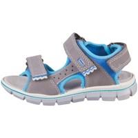 kengät Lapset Sandaalit ja avokkaat Primigi Tevez Harmaat, Vaaleansiniset