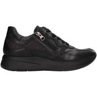 kengät Naiset Matalavartiset tennarit NeroGiardini I013187D BLACK
