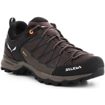 kengät Miehet Vaelluskengät Salewa Mtn Trainer Lite GTX 61361-7512 brown