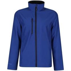 vaatteet Miehet Takit Regatta Honestly Made TRA600 Royal Blue