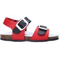 kengät Lapset Sandaalit ja avokkaat Bionatura LUCA Punainen