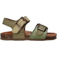 kengät Lapset Sandaalit ja avokkaat Bionatura LUCA Vihreä