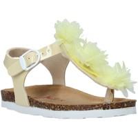 kengät Tytöt Sandaalit ja avokkaat Bionatura 22B 1007 Keltainen