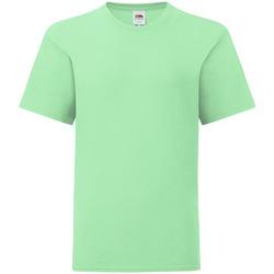vaatteet Lapset Lyhythihainen t-paita Fruit Of The Loom 61023 Mint Green