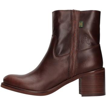 kengät Naiset Nilkkurit Dakota Boots C12 BROWN