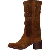 kengät Naiset Saappaat Dakota Boots C5 BROWN
