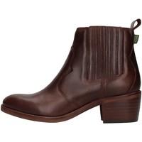 kengät Naiset Nilkkurit Dakota Boots DKT73 BROWN