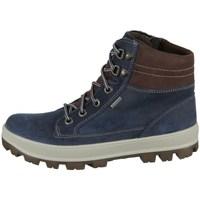kengät Lapset Bootsit Superfit Tedd Harmaat, Ruskeat, Grafiitin väriset